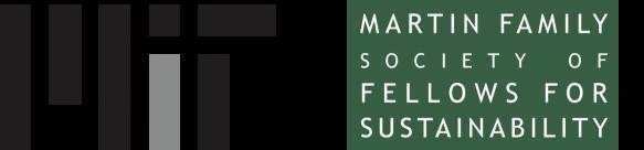 MIT-Martin Logo